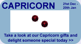 Take a look at our Capricorn Gift Ideas