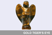 Take a look at our Gold Tiger